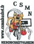 Logo CSMN
